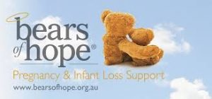 Bears of hope logo